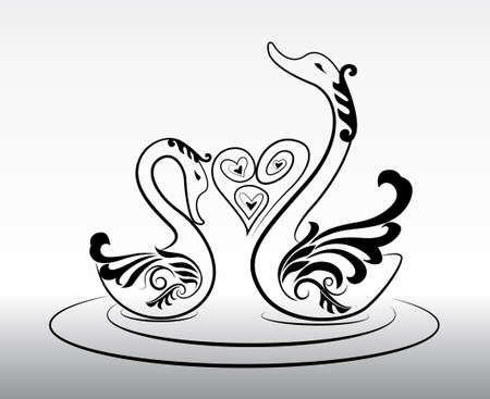 2 swimming swans in love vector Vector