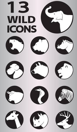 wild icon collection. Vector in Eps10 format Vector