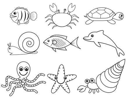 black and white sea and shell  animals Vector