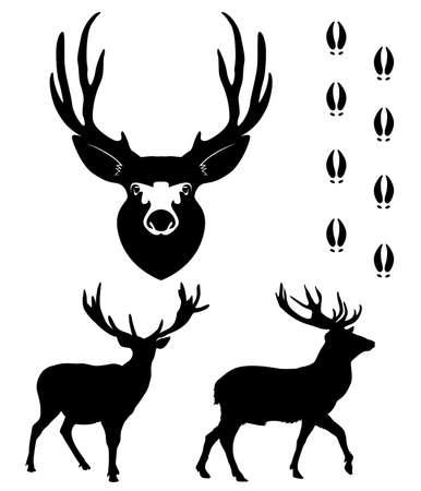 ciervo: Ciervo de silueta sobre fondo blanco  Vectores
