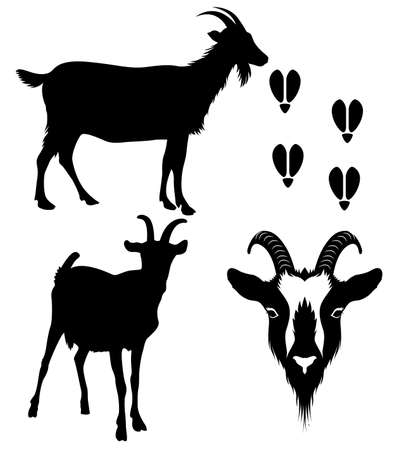 goat figures and decorated head silhouette on white background