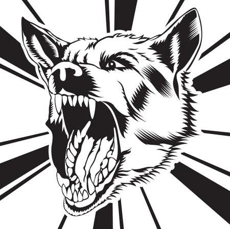 angry dog: perro