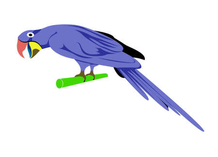Cartoon animal ,Parrot, flat coloring style vector Vector