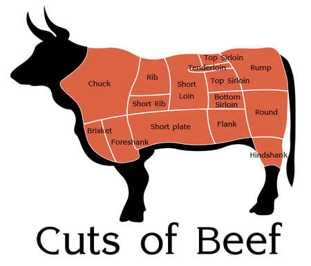 Vector Beef Cuts Chart  isolated on white background