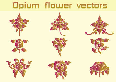 Opium floral pattern on White background