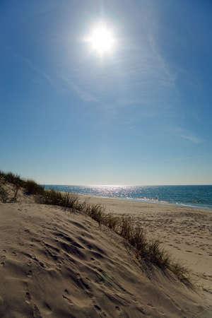Curonian Spit. Coast of Baltic sea