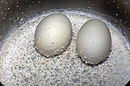 origen animal: Huevos duros con los restos de sal en una cacerola Foto de archivo