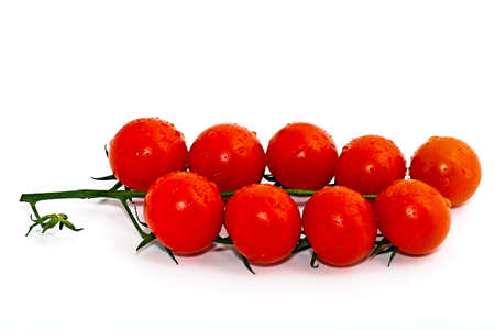 Cherry tomatoes on a branch on a white background Stock Photo - 17410790