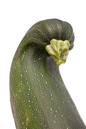 Zucchini, like a goose mutant isolated on white background Stock Photo - 17411165
