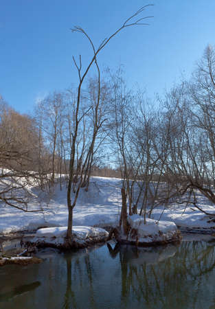 Trees over the river after a sleet in Moscow suburbs Stock Photo