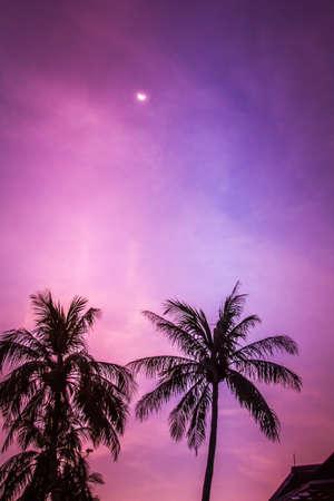 langkawi: Tropical sky Langkawi Stock Photo