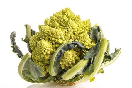Romanesco Broccoli or cauliflower isolated on white photo
