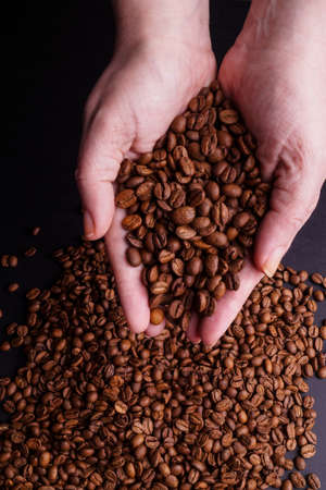 decaffeinated: Hands holding Coffee Beans isolated on Black