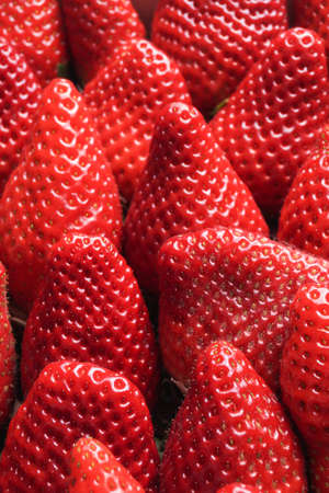 Red Ripe delicious Organic Strawberries, close up photo
