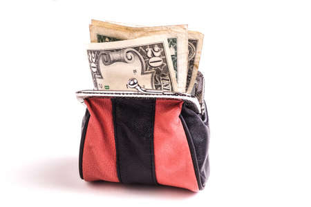Purse with Dollar Bills, a nest egg and money for payment photo