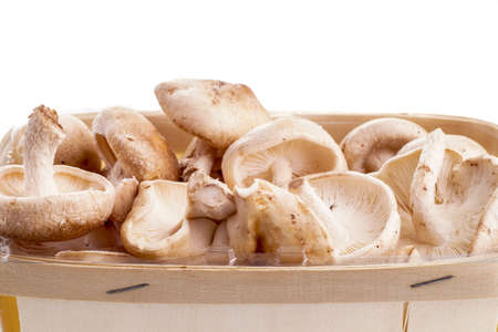 isoleted: Basket of Shiitake mushrooms isoleted on white Stock Photo