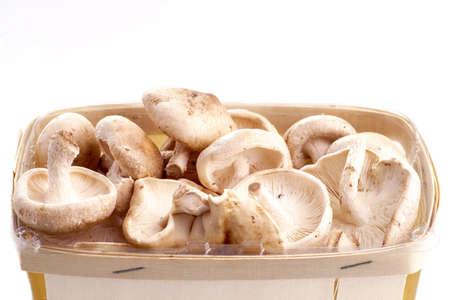 isoleted: Basket of Shiitake mushrooms isoleted on white Stock Photo
