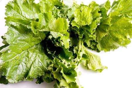 Cime De Rapa, Kohlrabi, frisch gesund italienisch Gemüse, isoliert auf weiß Standard-Bild - 52588834