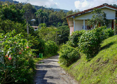 primarily: Havana, Cuba - January 7, 2016: Houses in the town of La Terraza, which are brought in connection with a forest restoration project. Today inhabited the city primarily of people who earn their living by eco tourism in forest project