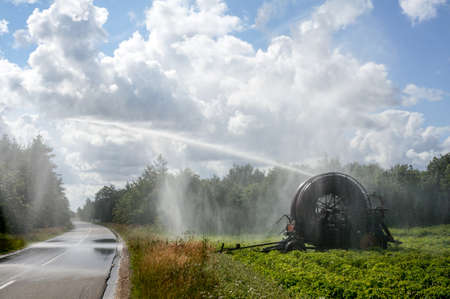Danish summer when the crops in the field requires water of an agricultural irrigation system to give the best yield. Irrigation Pivot. Agriculture. Denmark Stock Photo