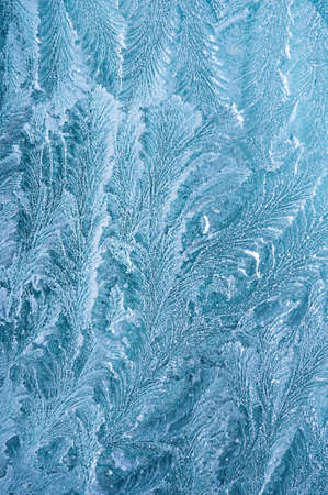 Iceflowers, frozen.The ice-cold frost forms ice crystals in beautiful unique patterns