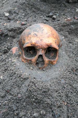 fouilles archéologiques avec le vieux crâne antique encore attraper enterré dans le bac Banque d'images