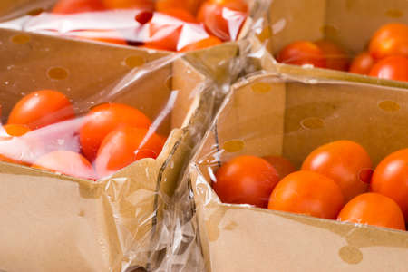 ripe cherry tomatoes packages in box and plastic close up and isolated on white background