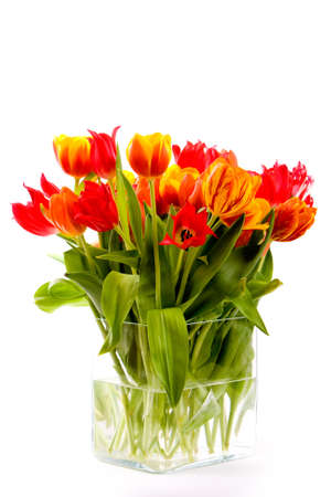 vase full with colorful tulips  Stock Photo