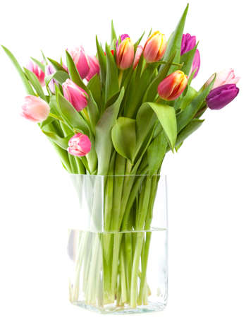 vase with tulips photo