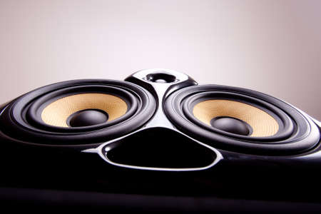 tweeter: Close up of a speaker