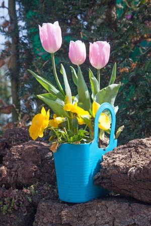 Panier de fleurs Banque d'images