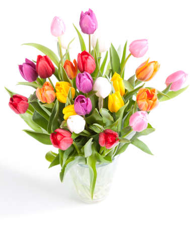 Colorful tulips in glass vase on white background