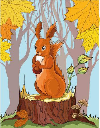 stumps: squirrel with acorn in autumn forest. No gradient.