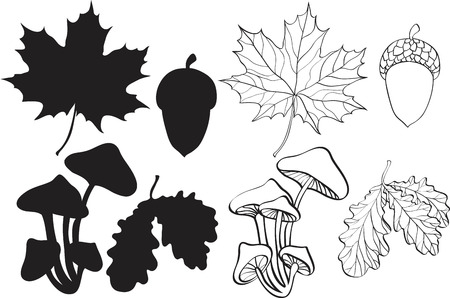 set of silhouette autumn plants