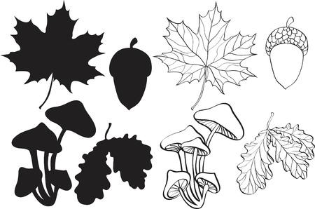 set van silhouet herfst planten Vector Illustratie
