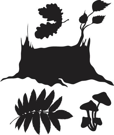 conjunto de plantas forestales aislados sobre fondo blanco