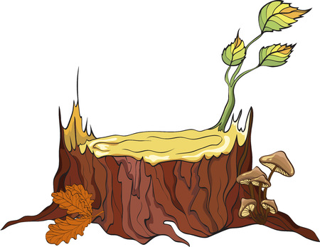 edible mushroom: Tree Stub and mushrooms Illustration