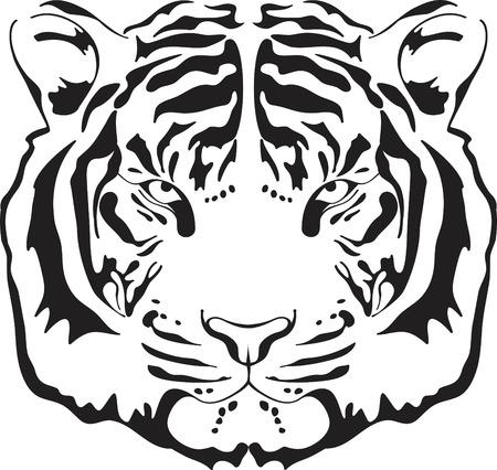 tigre caricatura: Silueta de cabeza de tigre. Ilustraci�n aislado sobre fondo blanco.