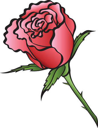 imagery:  illustration red rose on a white background.
