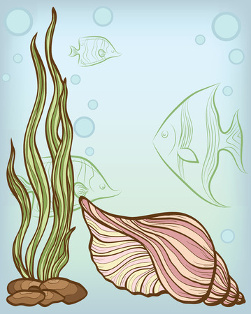 algae: background with shell and fishs