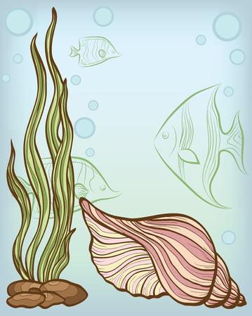 seetang: Hintergrund mit Shell und Fische