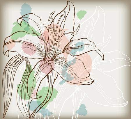 abstract background with decorative lily Vector