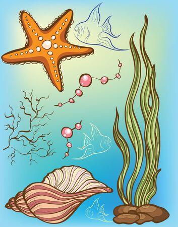 caracolas de mar: Fondo de mar Vectores