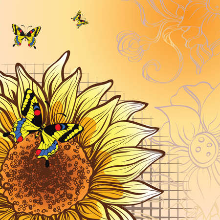 abstract background with sunflower and butterflies Vector