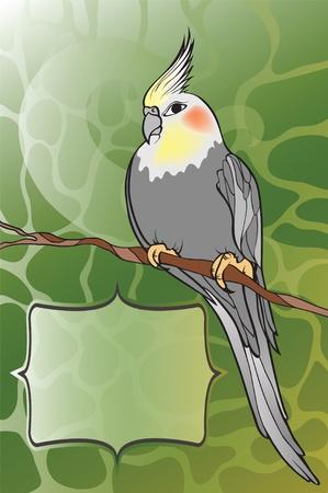 bird on tree Stock Vector - 9626180