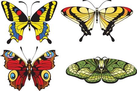 tattoo butterfly: set di farfalle Vettoriali