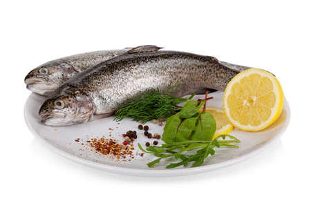 Rainbow trout isolated on white background photo