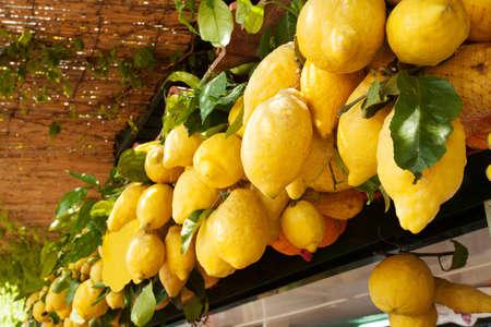 capri: Traditional delicious Italian lemons on Capri island, Naples, Italy  Stock Photo