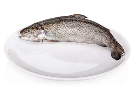Rainbow trout isolated on white  photo