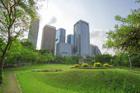 large tree: green grass field in big city park Stock Photo